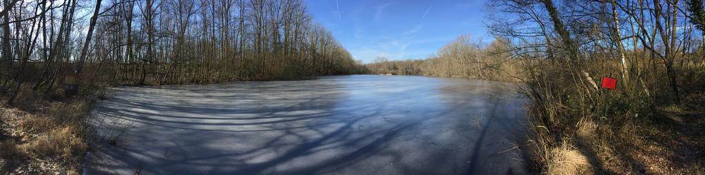Der Salzweiher im Winter